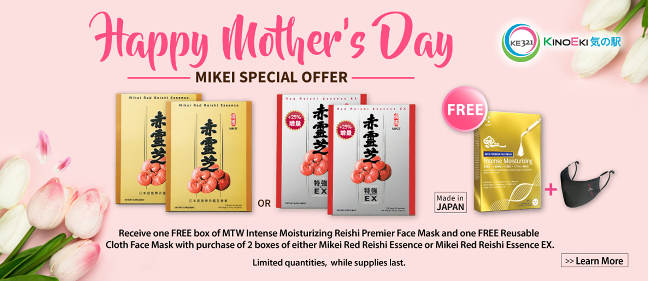 Mikei Special Bundles